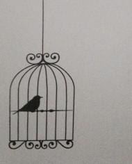 birdcage10