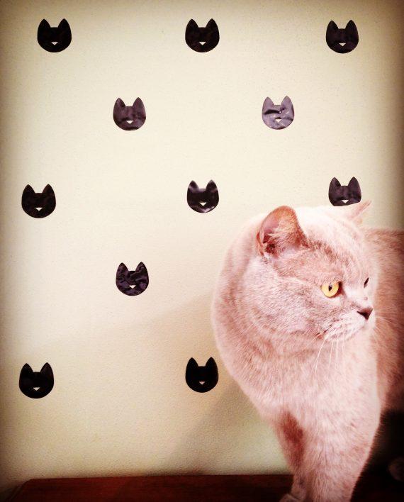 hippe muurstickers cat kopen