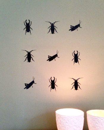 insecten_web_NEW