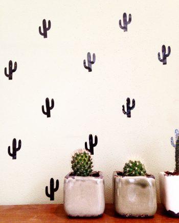 cactus_web_NEW
