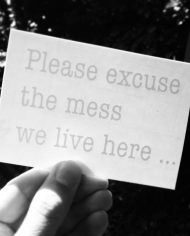 please_excuse_the_mess_detail