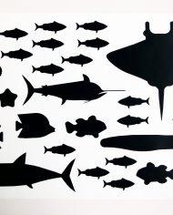 onderwaterdieren_B